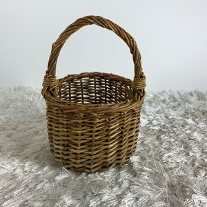 Wicker Basket Handle Plant Organizer Decor Boho